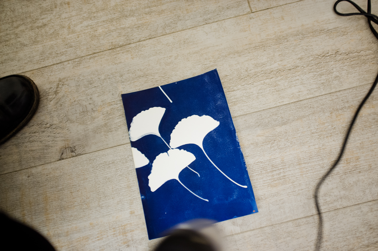 foto-forum, Workshop Christmas Cyanotypes