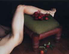 Exhibition: still – The Still-Life on Contemporary Photography